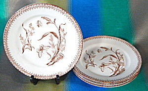 Vintage Brown Transferware Plate