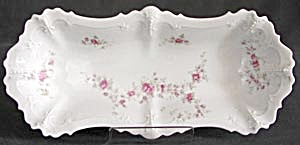 Antique Austrian Celery Tray (Image1)