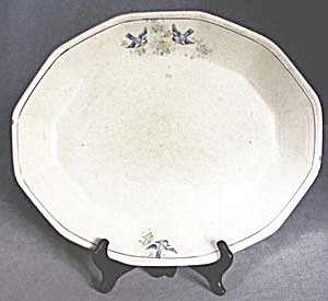 Vintage Bluebird Platter (Image1)