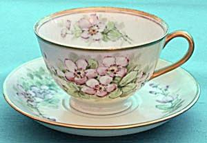 Vintage Wild Rose Cup & Saucer (Image1)