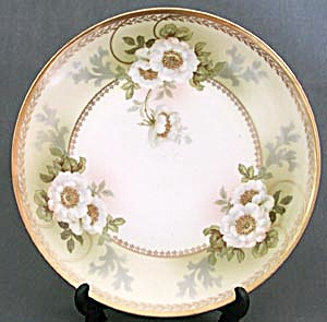 Vintage Austrian Hand Painted White Rose Plate