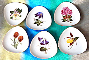 Hutschenreuther, Selb Bavaria Wildflower Dishes