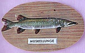 Cracker Jack Toy Prize: Muskellunge (Image1)