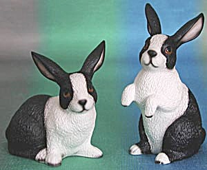 2 Dutch Bunnies By Harvey Knox