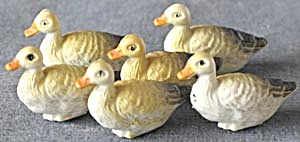 Vintage Tiny Hard Rubber Ducks Set Of 6