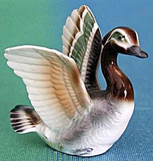 Wood Duck (Image1)