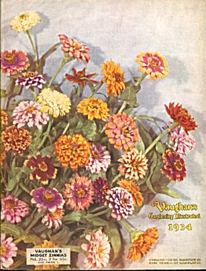 Vintage Vaughan's Gardening Illustrated