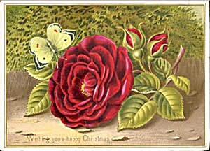 Vintage Christmas Card: Wishing You A Happy Christmas