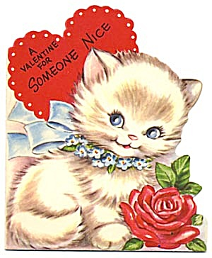 Valentine Card: Cat W/ Red Rose 2nd Playing W/ Dew Drop