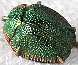 Vintage Egyptian Revival Real Scarab Beetle Stick Pin (Image1)