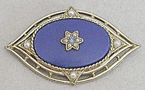 Vintage Blue Oval Pin (Image1)