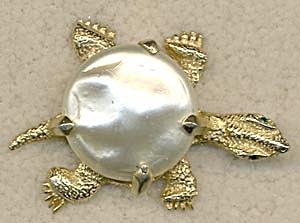 Vintage Turtle Pin (Image1)