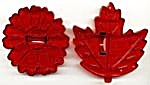 Vintage Maple Leaf & Flower Cookie Cutters (Image1)
