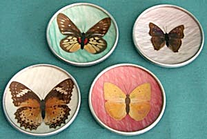 Vintage Butterfly Coaster Set of 4 (Image1)