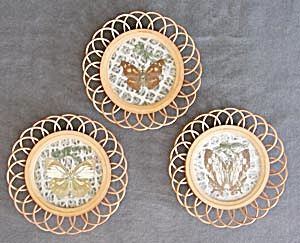 Vintage Butterfly Coaster Set Of 3