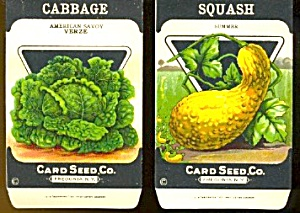 Vintage Vegetable Seed Packets Squash & Cabbage