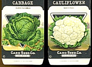 Vintage Vegetable Seed Packets Cauliflower & Cabbage