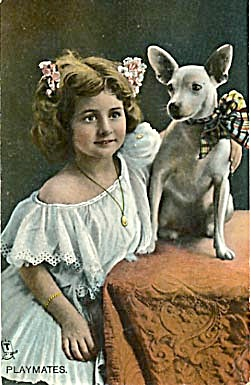 "Tuck Postcard ""Playmates"" Dog & Girl (Image1)"