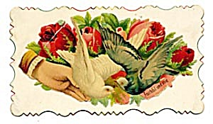 Vintage Calling Card 2 pigeons, Large Pinky Red Roses (Image1)