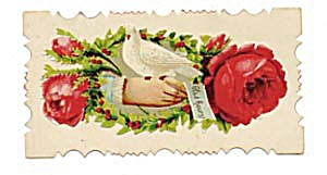 Vintage Calling Card Dove Sitting on Hand (Image1)
