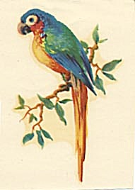 Vintage Meyercord Decal Small Blue & Green Parrot (Image1)