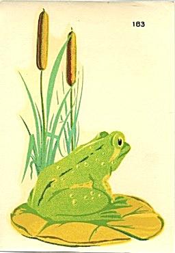 Vintage Decal Frog (Image1)
