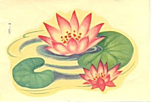 Vintage Water Lily Decal