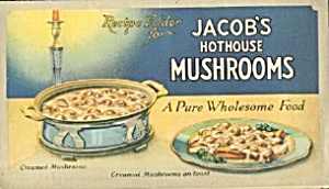 Recipe Folder For Jacob's Hothouse Mushrooms
