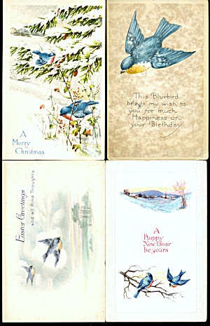 Vintage Bluebird Postcards