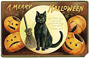 Vintage German Black Cat Halloween Postcard (Image1)