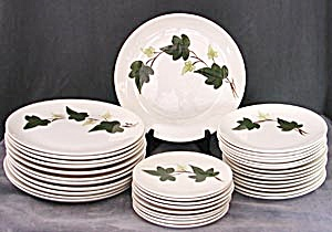 Blue Ridge Southern Potteries Baltic Ivy Set Of Dishes