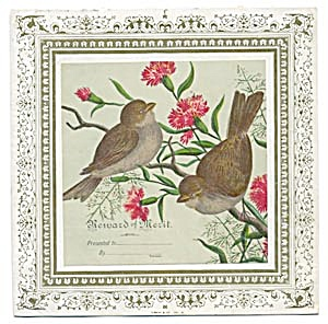 Victorian Reward of Merit Birds (Image1)