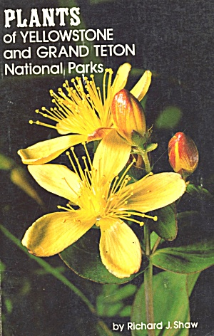 Plants Of Yellowstone And Grand Teton National Parks