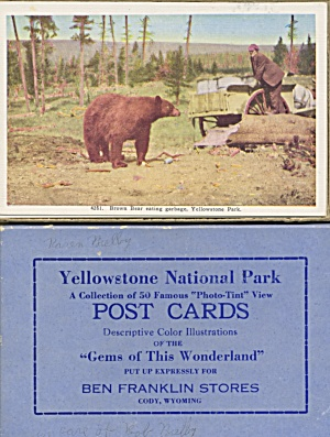 Vintag Yellowstone National Park Post Cards