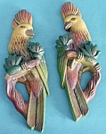 Click here to enlarge image and see more about item A21: Vintage Pair of Parrot Plaster Plaques