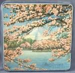 Click here to enlarge image and see more about item ADTIN207: Vintage Mrs. Steven's Candies Cherry Blossom Tin
