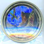 Click here to enlarge image and see more about item APR61: Vintage Butterfly Wing Plate Of Rio
