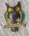 Click here to enlarge image and see more about item HJV2: Vintage Halloween Horned Owl Pin
