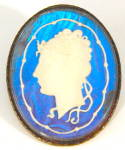 Click here to enlarge image and see more about item JFP3: Vintage Sulphide Cameo Butterfly Wing Brooch