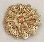 Click here to enlarge image and see more about item JVCPL9: Goldtone Filligree Flower Clasp