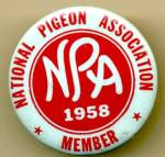 Click here to enlarge image and see more about item MVA46: National Pigeon Association Member Badge Pinback