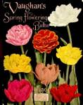 Click here to enlarge image and see more about item P27: Vaughan's Spring Flowering Bulbs