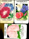 Click here to enlarge image and see more about item P33: Vintage F[ower Seed Packets