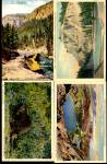 Click here to enlarge image and see more about item Y13: Vintage Yellowstone National Park Postcards