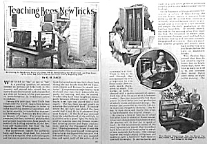 1928 BEE KEEPING TRICKS Magazine Article (Image1)