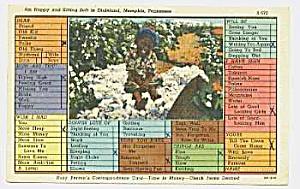 1948 Derogatory BLACK AMERICANA Postcard (Image1)