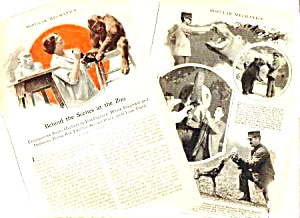1926 BEHIND THE SCENES AT NY ZOO History Mag. Article (Image1)