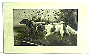 Early HUNTING DOGS Postcard (Image1)