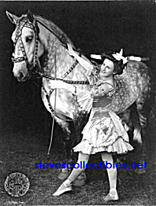 c.1908 CIRCUS GIRL Costumed With Horse - Photo Rights (Image1)