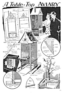 1933 BUILD BIRD AVIARY Magazine Article (Image1)